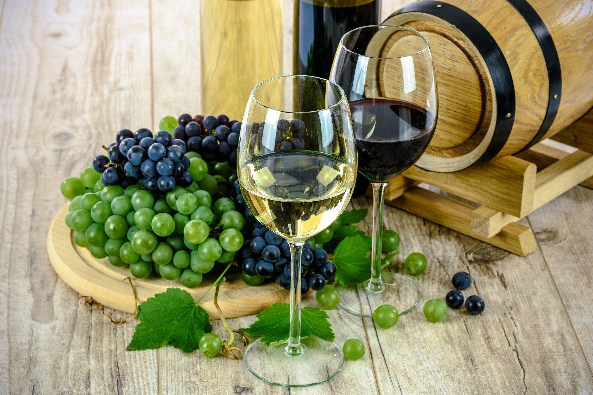 Los mejores vinos valencianos