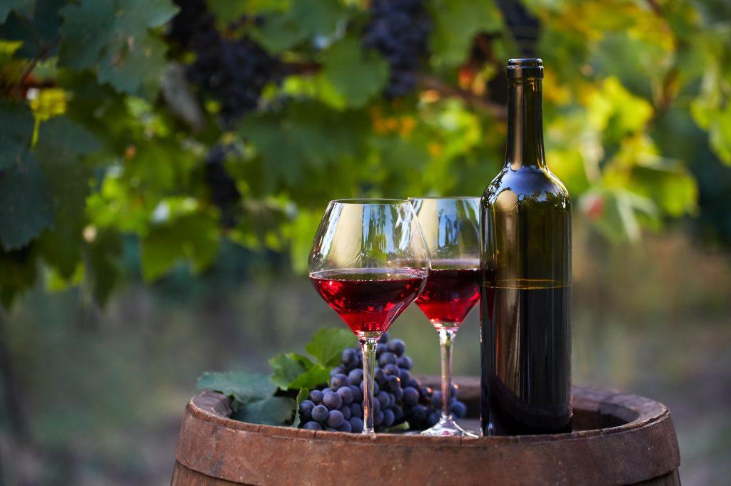 mejores vinos alicantinos
